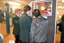 Art GCSE PPE final paintings on show at the Christmas Soiree