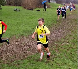 County Cross Country Championships