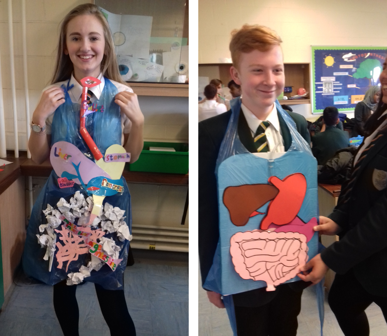 Fantastic digestive system models made by Year 9!