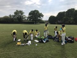 Cricket and Tennis Fixture Reports