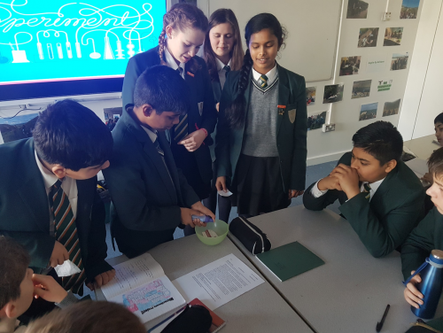 Year 8 Tackle Global Issues in Geography!