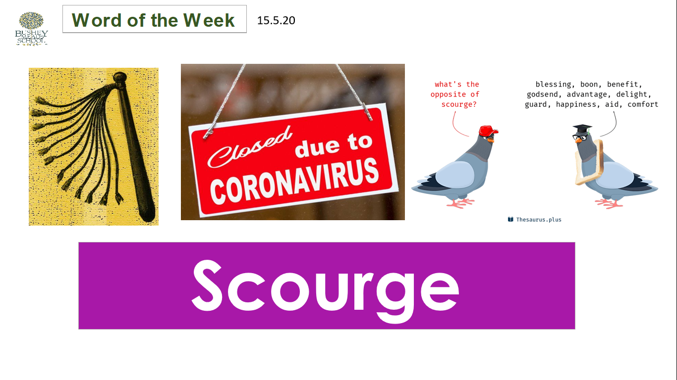 Word of the Week: Scourge