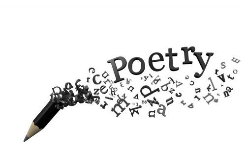 Lockdown Poetry Competition Winners!