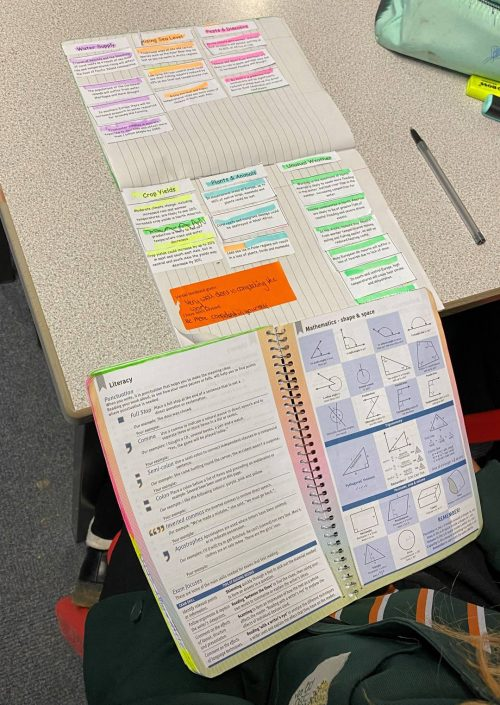 Engaging Card Sort Exercise in Year 8 Geography