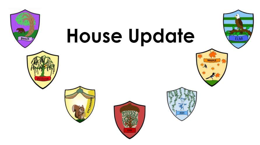 Elm house Update