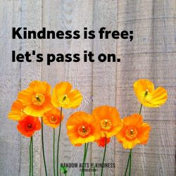 The Power of Small Acts of Kindness